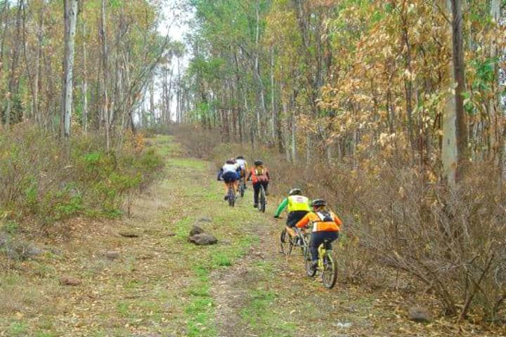 Mejores rutas para cicloturismo en México. Imagen: Bike a fondo