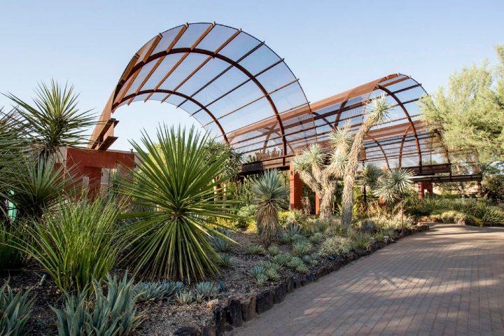 Phoenix Desert Botanical Garden. Foto_ Garden Collage