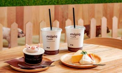 Cafetería Mipig en Japón. Imagen: Mipig cafe