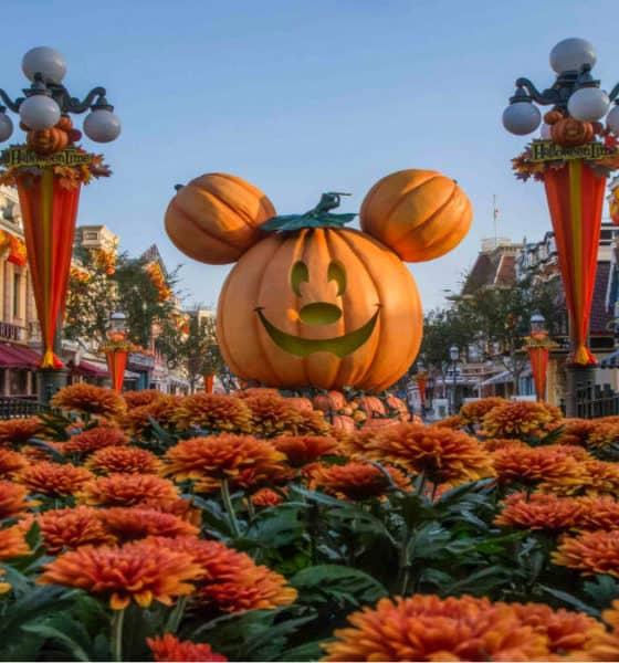 Portada. Halloween en Disneyland California. Foto. TripSavvy