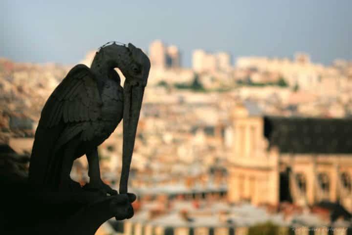 Reconstrucción de Notre Dame Francia Foto Ray Wewerka