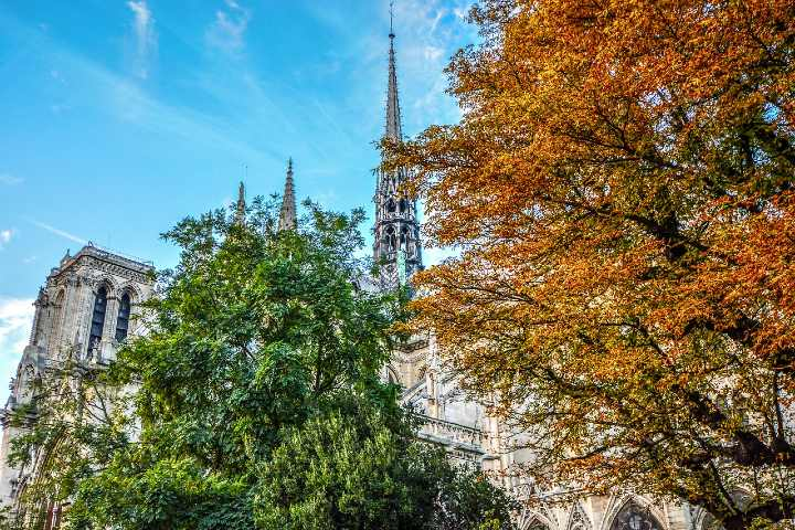 Reconstrucción de Notre Dame. Foto Jacques Gaimard.