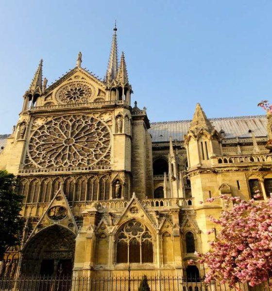Reconstrucción de Notre Dame. Foto Ronile.