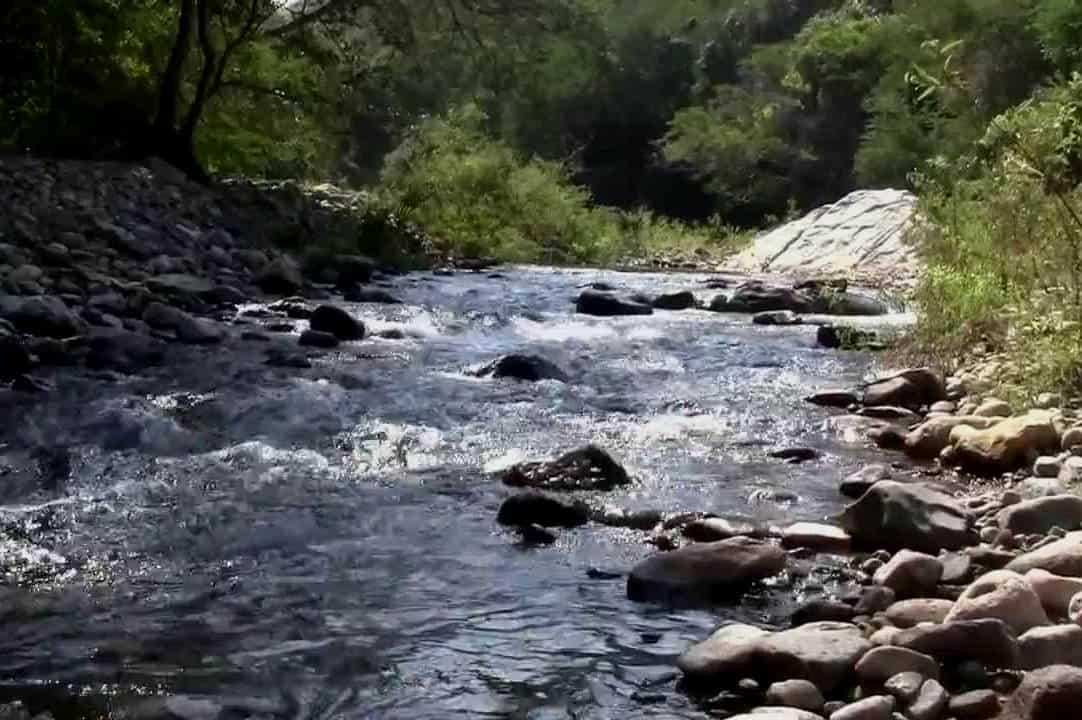 Sierra de Manantlán Jalisco Foto Youtube