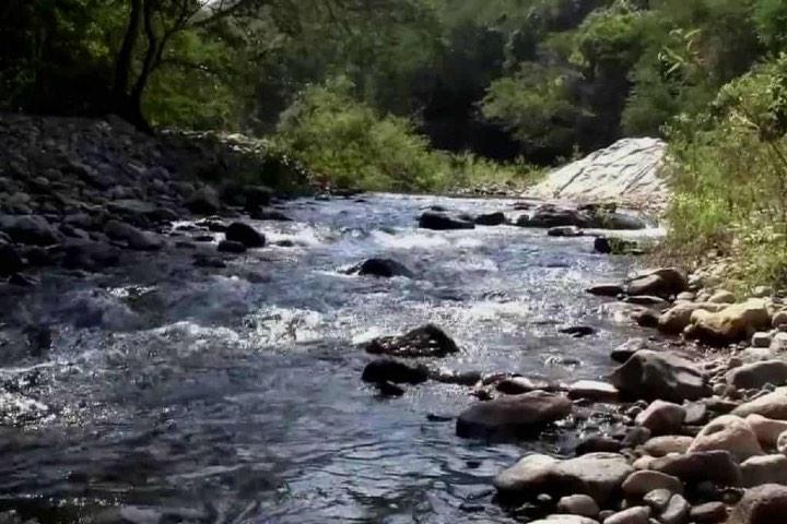 Sierra de Manantlán Jalisco. Foto Youtube