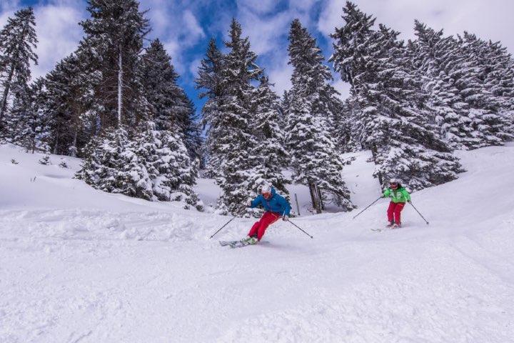 Skiing. Foto I feel Slovenia