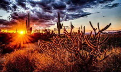 portada Arizona Foto Travel Update