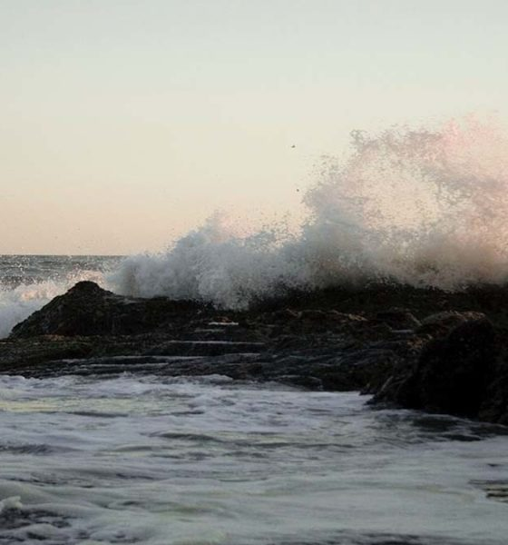 Portada playa ventura. Foto. Isaac E. Quezada