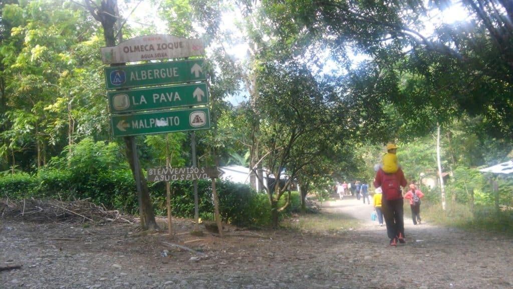Qué visitar en Agua Selva Tabasco