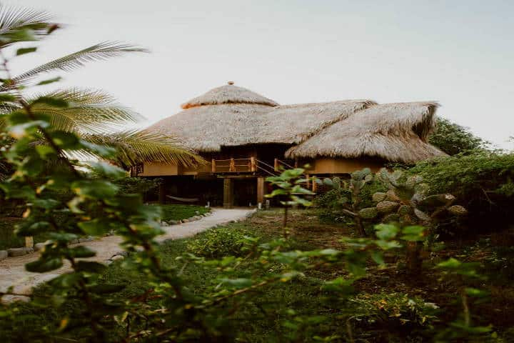 La casa del árbol Zihuatanejo