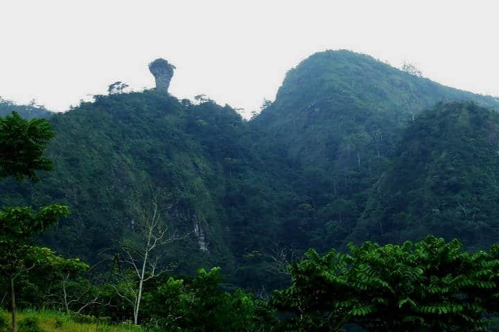 Cerro de la Copa. Fot Red de Educadores Ambientales de Tabasco. OSC.