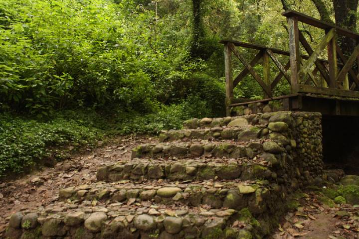 Ciudad y Poder Foto: Parque Nacional Los Dinamos