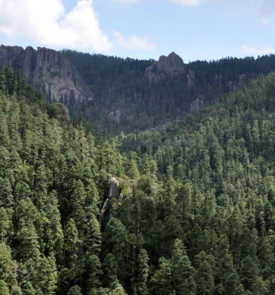 Eco Parque Cerro de la Escamela Foto. Visit México