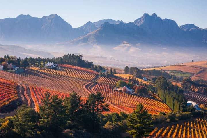 Región vinícola de Sudáfrica