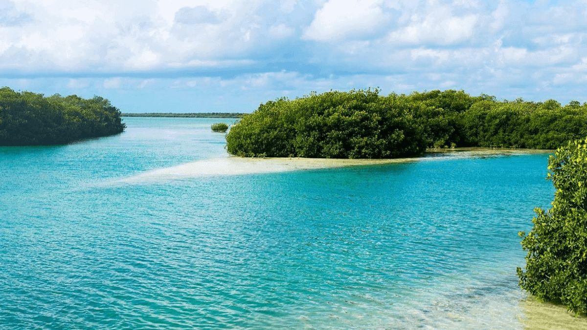 Info Quintana Roo Foto: ¿Quieres conocer la Puerta del Cielo?