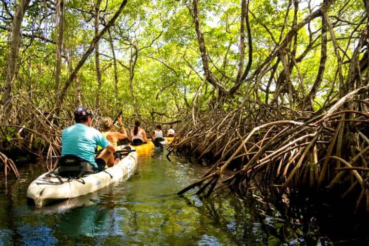 Isla de la pasion Foto de Floura tours