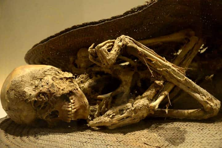 Momias en el Museo de El Carmen Foto Hector Montaño FB 3