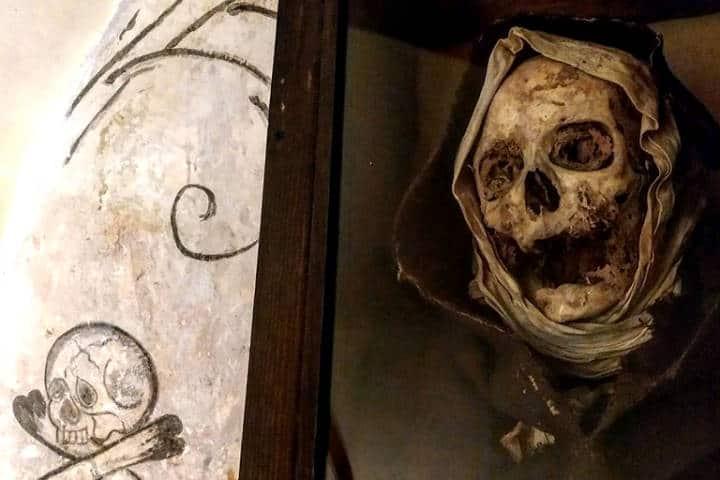 Momias en el Museo de El Carmen. Foto: Necroturismo México