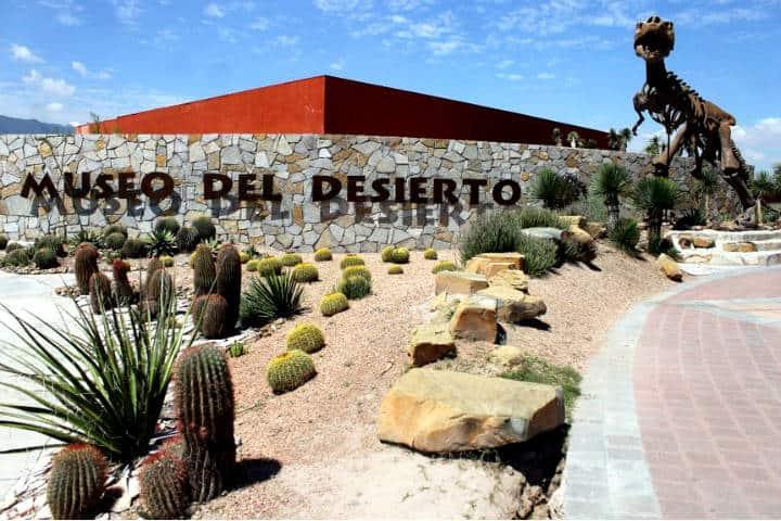 Museo del Desierto. Foto Municipio de Saltillo.