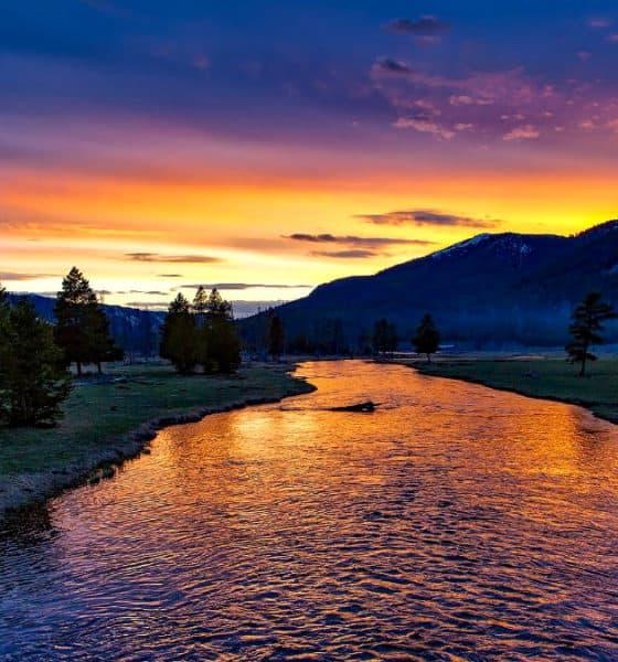 Parque Nacional de Yellowstone. Foto 12019