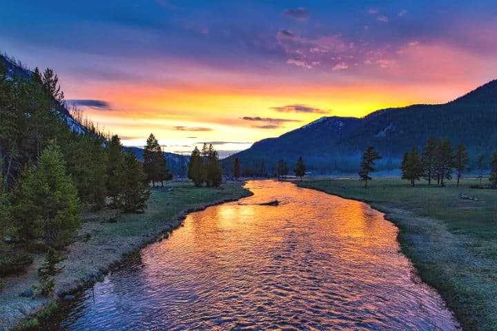 Parque Nacional de Yellowstone. Foto: 12019