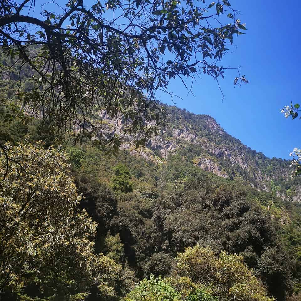 Parque nacional los dinamos foto Iris Metta