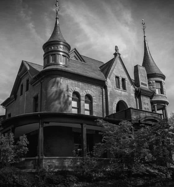 Pinto su casa de negro Foto. Pixibay.jpg