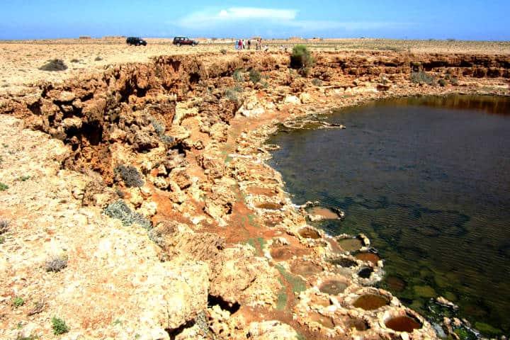 Socotra, un lugar en el mundo que no se parece a ningún otro Foto Water Alternatives
