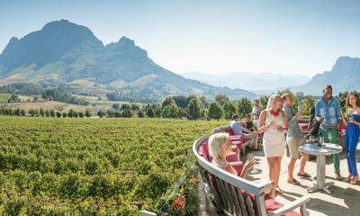 Región vinícola de Sudáfrica Foto. Southafrican.net