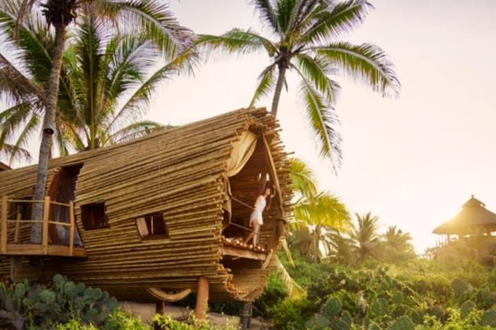 Treehouse. Foto Playa Viva.