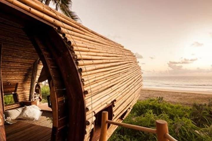 Vista al mar. Foto Playa Viva.