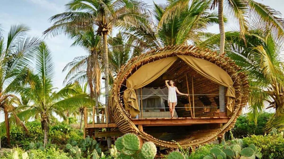 Duerme ya en la casa del árbol Foto.Playa Viva
