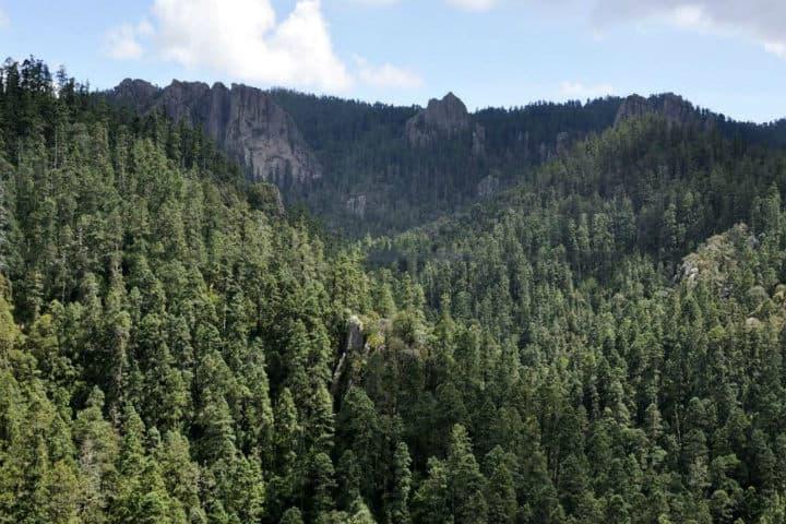 Eco Parque Cerro de Escamela Veracruz. Foto El souvenir