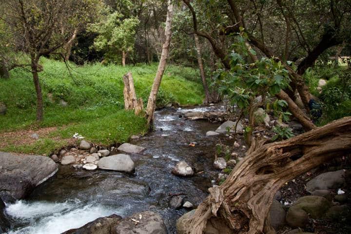 qué hacer en Parque Ejidal San Nicolás Tololapan. Foto MX City