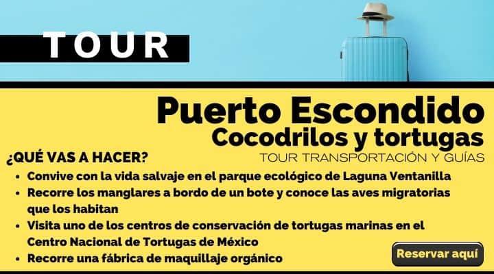 Tour Puerto Escondido, ecotour de cocodrilos y tortugas en la costa de Oaxaca. Arte El Souvenir