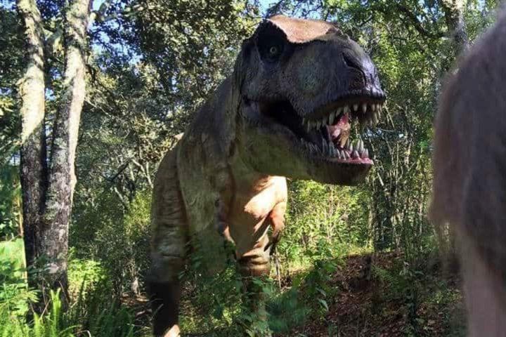 Bioparque Estrella el safari más grande. Foto Archivo.
