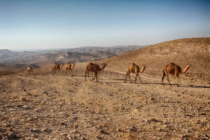 Desierto de Négev en Israel Foto PXhere 6