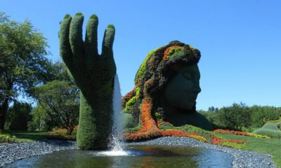 Jardín Botánico de Montreal Foto. Pixabay
