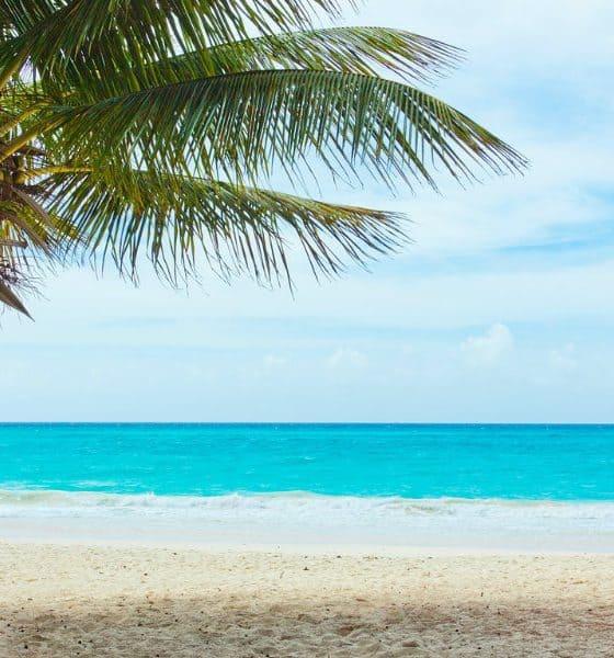 La Playa Secreta de Quintana Roo Foto.Pixabay