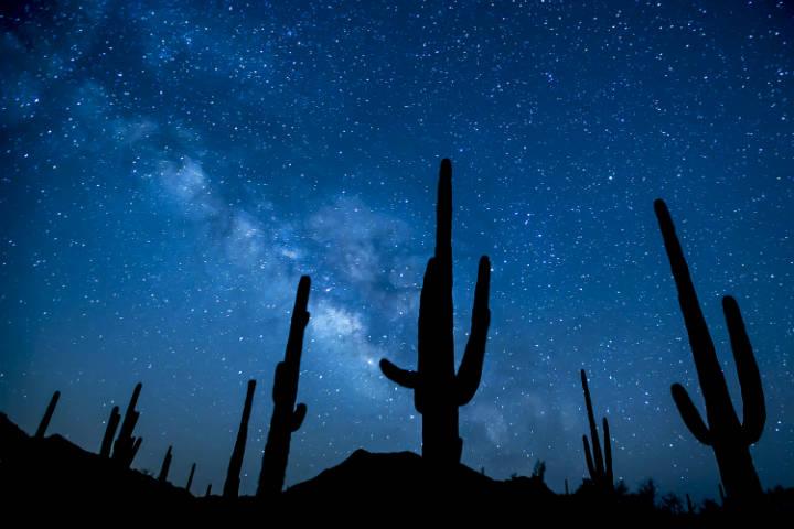 Visitar el Gran Cañon del Colorado Foto Beureau Land Management