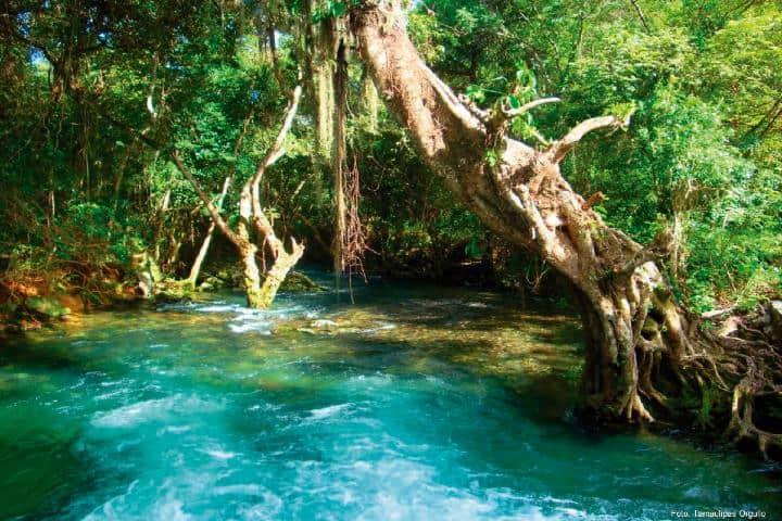 Las-aguas-más-azules-de-Tamaulipas-Foto-Gusto-por-México-2