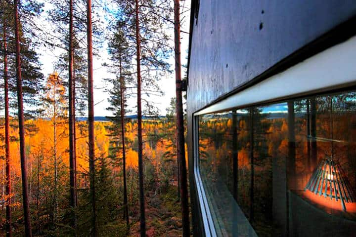 Treehotel ¡hospédate en los árboles! Foto Treehotel