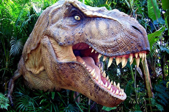 4 lugares para ver dinosaurios en CDMX Foto Scotte Kinmartin