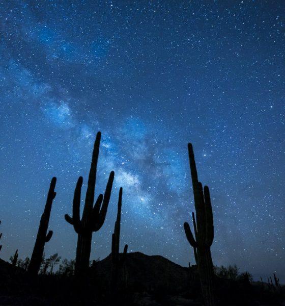 El más grande Santuario de Cactus del mundo está en La Paz