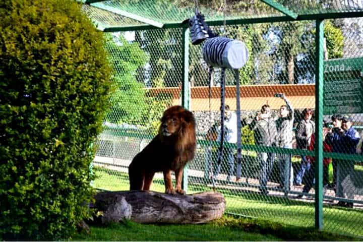 Parque Ecológico de Zacango Foto Criterio Noticias
