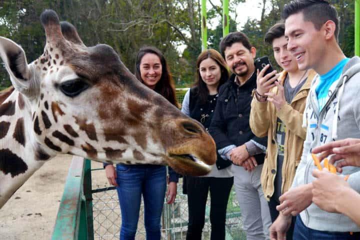 Parque Ecológico de Zacango Foto Reporte