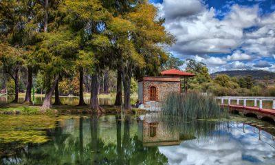 arque Nacional Molino de Flores Nezahualcóyotl en Texcoco Foto.Pixabay