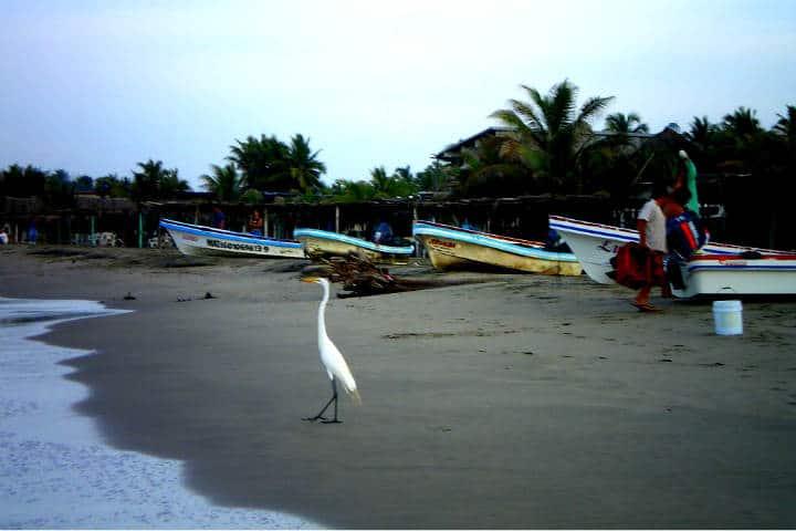 Playa Azul Michoacán Foto Nawre