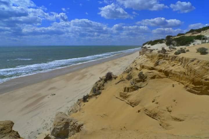 Playa de Doñana. Foto Nacho Pintos
