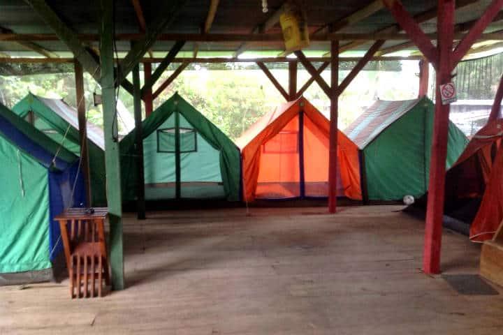5 sitios para visitar en Bocas del Toro, uno de los archipiélagos más biodiversos del mundo. Foto de Hostal La y Griega